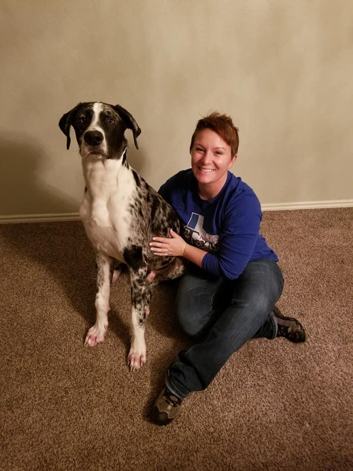 dallas dog trainer